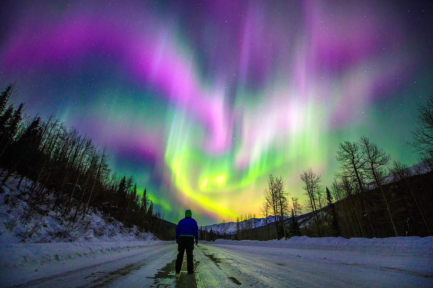 Alaska Custom Private Guided Tours