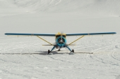 Beaver N93DG on the Kahiltna