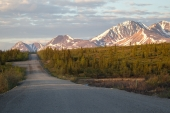 Enter the Denali Highway