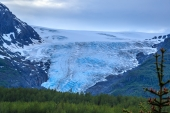 Exit Glacier From Viewpoint