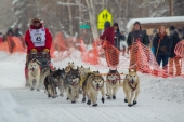 Jan Steves 2015 Iditarod