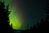 Northern Lights Down the Valley