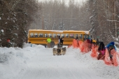 Peter Kaiser Missed the Bus 2015 Iditarod