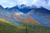 Sun Patches on Chugach Slope