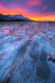 Sunset Behind Icy Flats