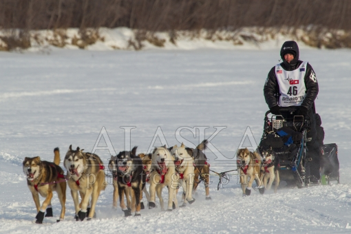 Dallas Seavey 2015 Iditarod