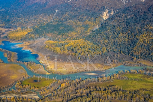 Autumn Up Over the Chilkat