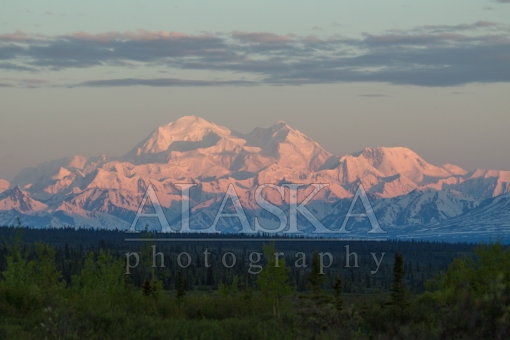 Denali Summer Sunrise