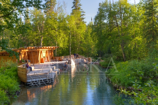 Down at Liard River Hot Springs