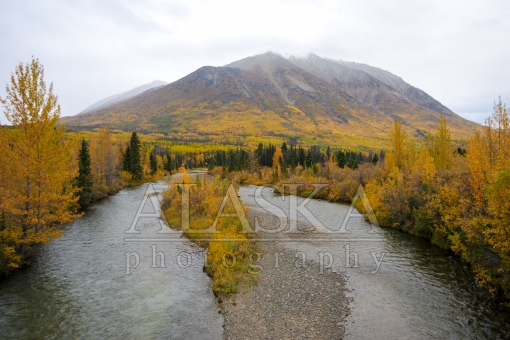 Fall Colors up the Haines Highway