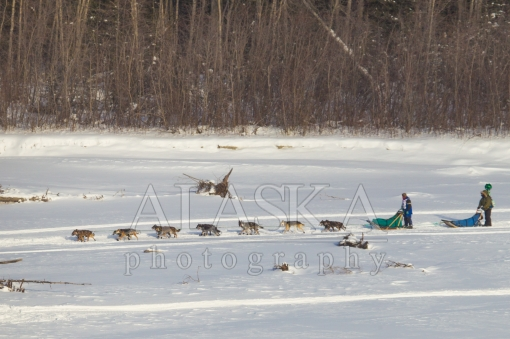 Google Street View Runs the Iditarod