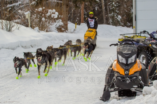 Iditarod with Sass