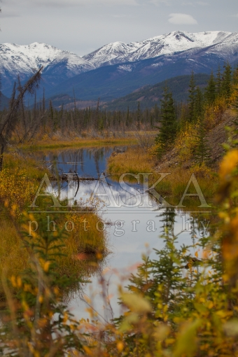 Muskwa Range Reflection