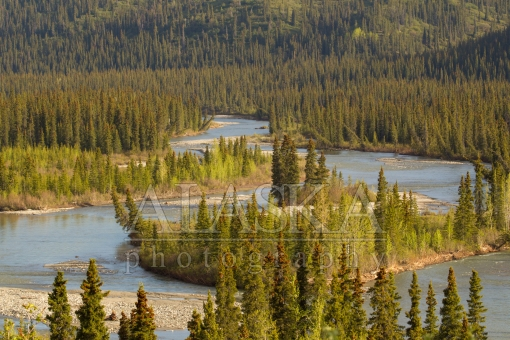 Nenana River Curves