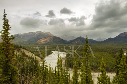 Nenana Through Denali