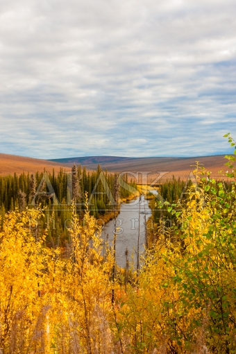 Nome Creek by Steese Highway