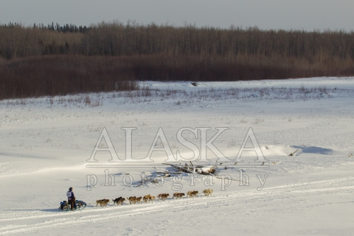 Timothy Hunt 2015 Iditarod