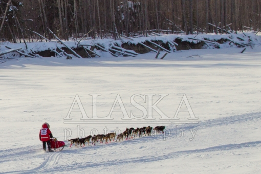 Zoya DeNure in the 2015 Iditarod